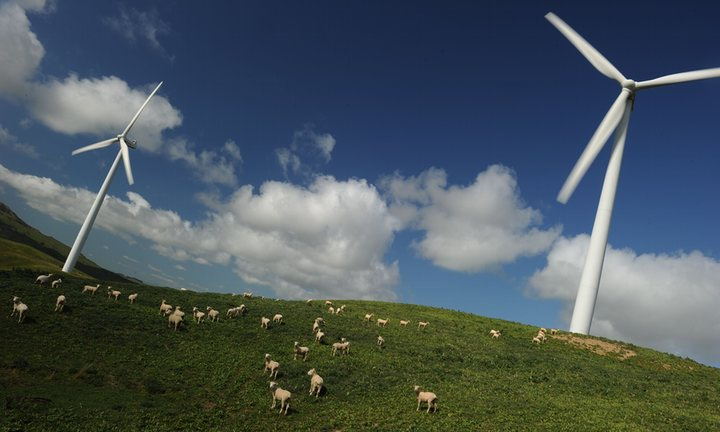 Commons and Lords Square up over Energy Subsidies